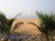 Trivandrum - pláže za naším hotelem