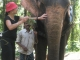 slonice Minashi