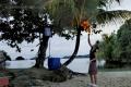 Kokosy před chatkou